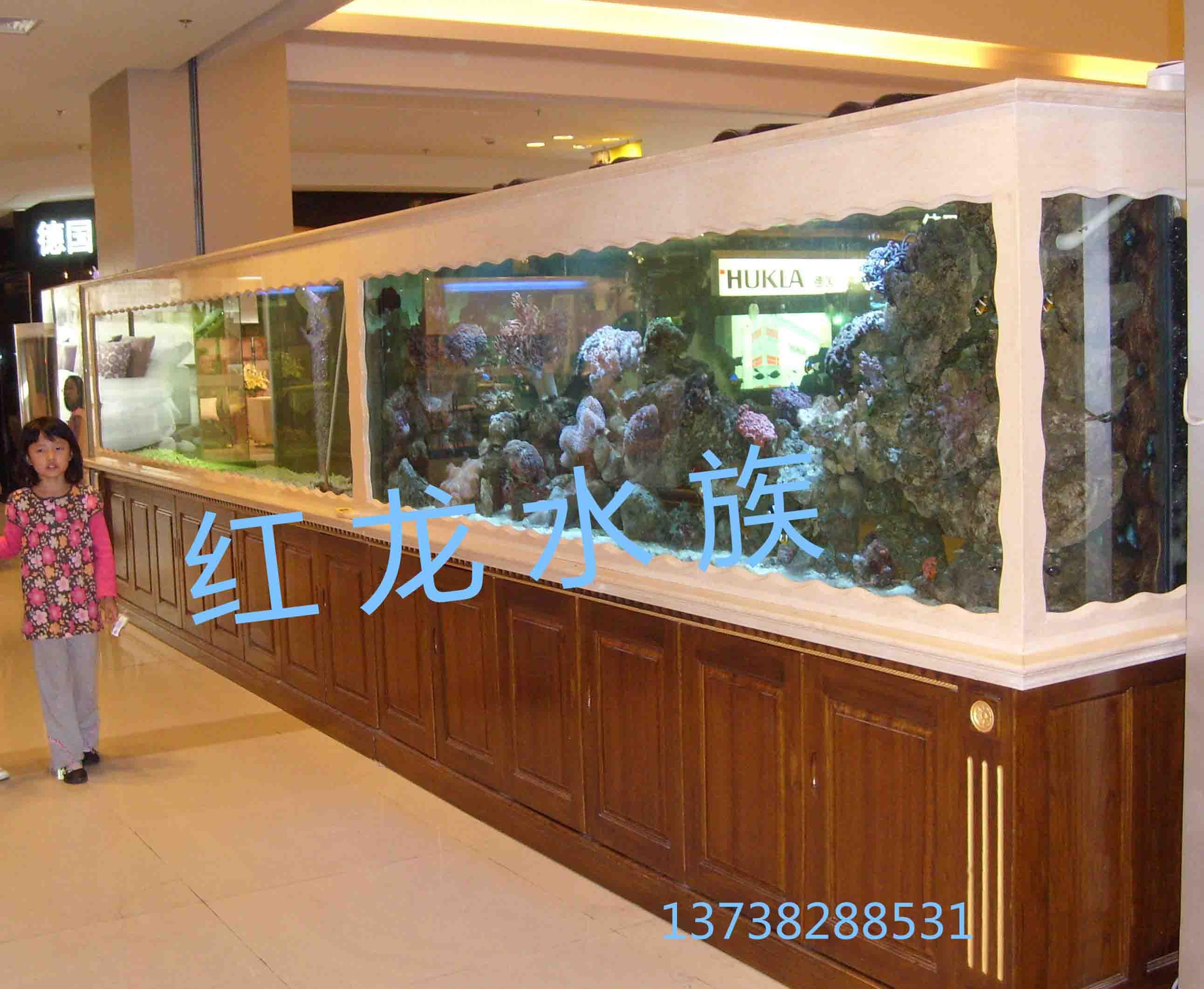 嘉兴海鲜鱼缸